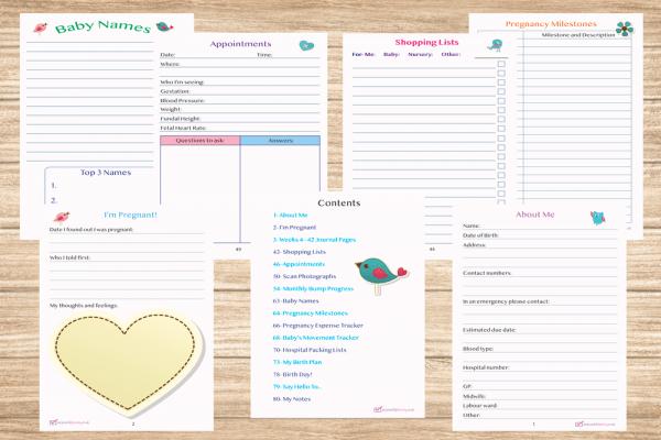 Pregnancy Diary inside 1
